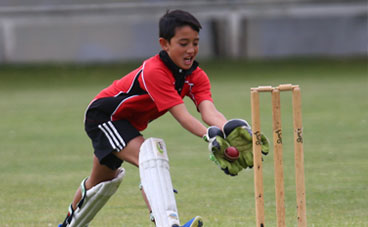 Schools and Juniors Cricket